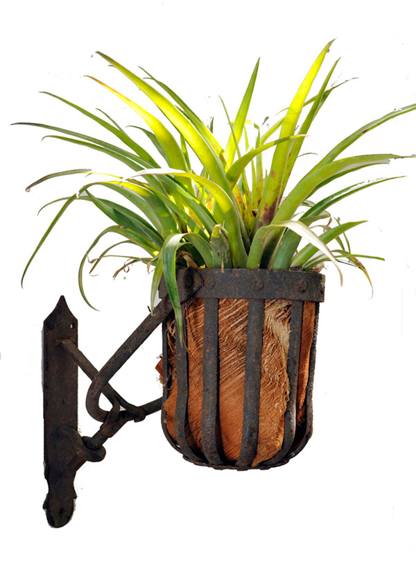 Flambeau Hanging Planter